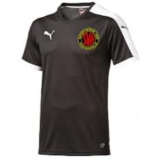 674c13625b58 SV Huchenfeld   Vereine   yam-yam-world.de